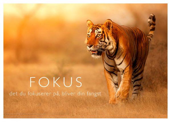 Plakat, der illustrerer mod
